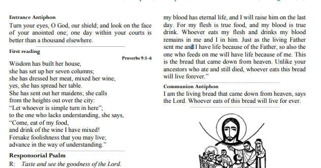 Bulletin 20th Sunday in Ordinary Time